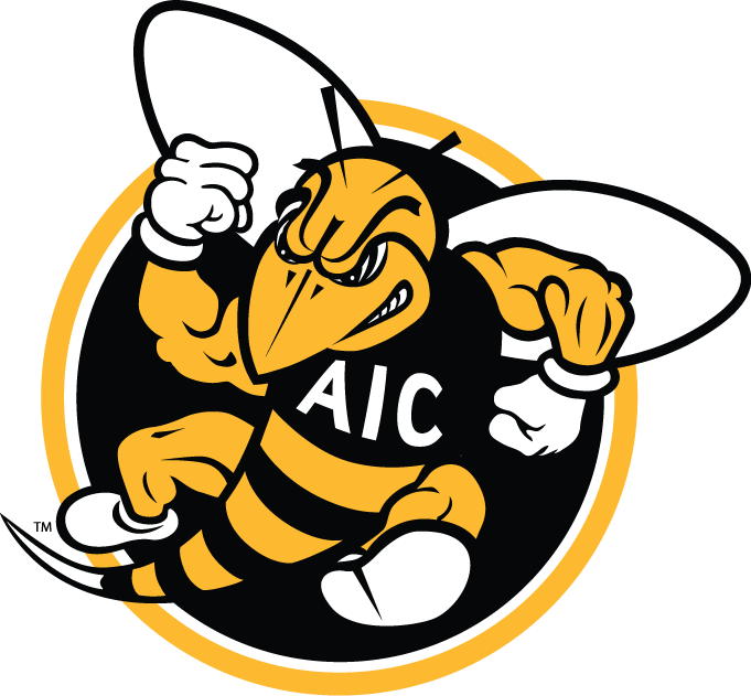 AIC Yellow Jackets 2009-Pres Alternate Logo v2 iron on transfers for clothing