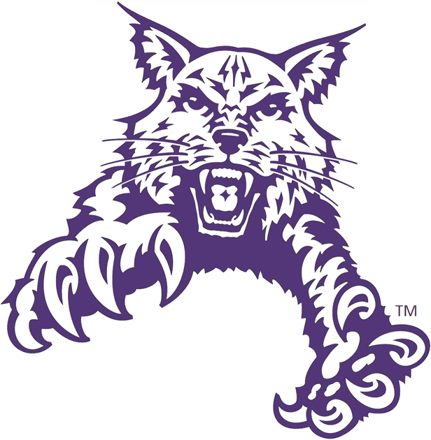 Abilene Christian Wildcats 1997-2012 Partial Logo v2 iron on transfers for clothing