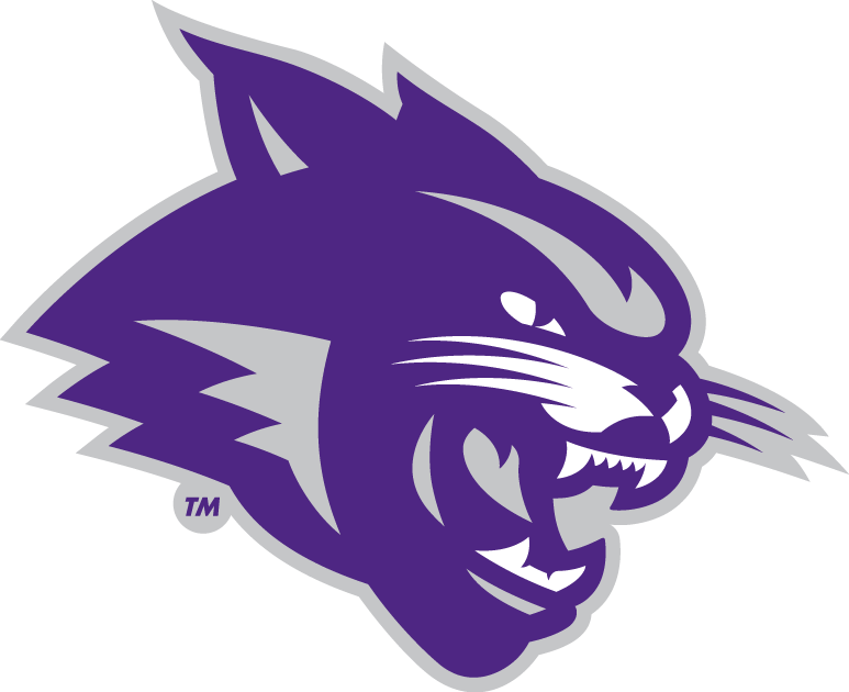 Abilene Christian Wildcats 2013-Pres Partial Logo iron on transfers for clothing