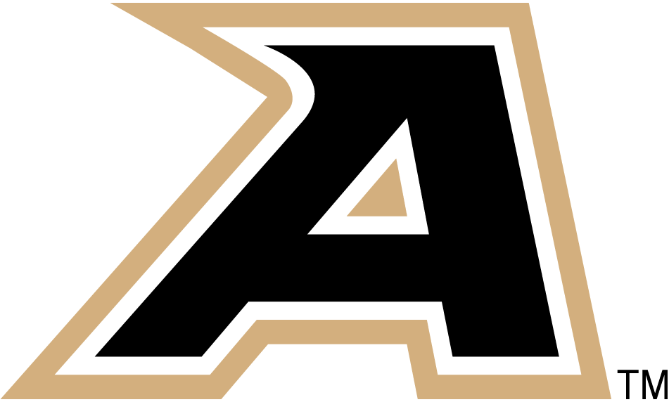 Army Black Knights 2006-2014 Secondary Logo iron on transfers for clothing