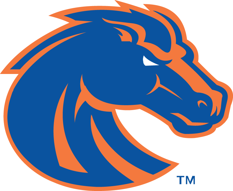 Boise State Broncos iron ons