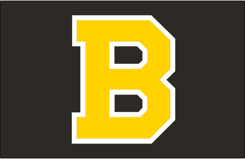 Boston Bruins 1948-1955 Jersey Logo iron on transfers for clothing