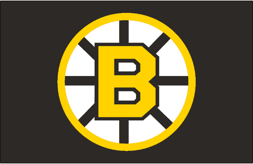 Boston Bruins 1955-1995 Jersey Logo iron on transfers for clothing