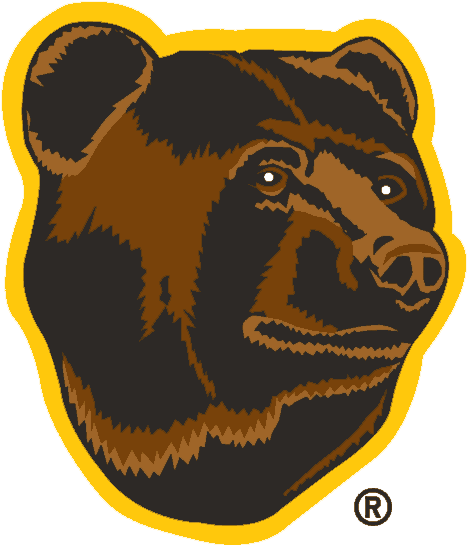Boston Bruins 1995-2007 Alternate Logo iron on transfers for clothing