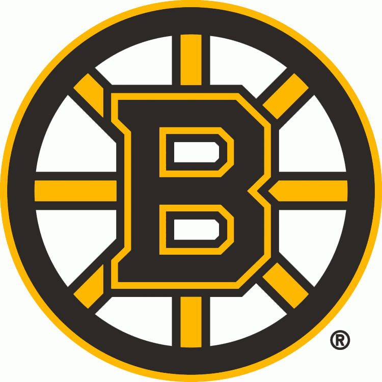Boston Bruins 2007-Pres Primary Logo iron on transfers for clothing...