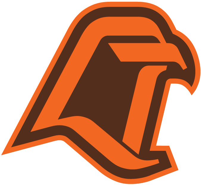Bowling Green Falcons 1980-1989 Alternate Logo iron on transfers for clothing