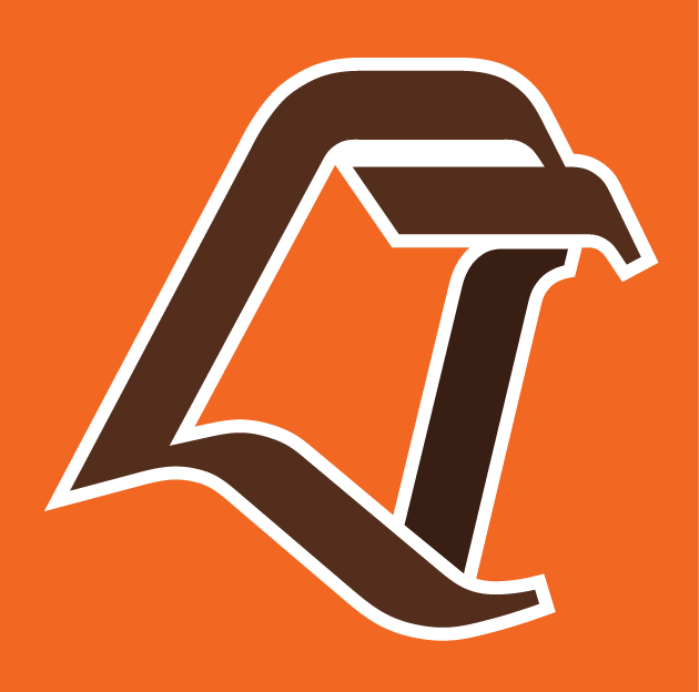 Bowling Green Falcons 1990-2005 Alternate Logo iron on transfers for clothing