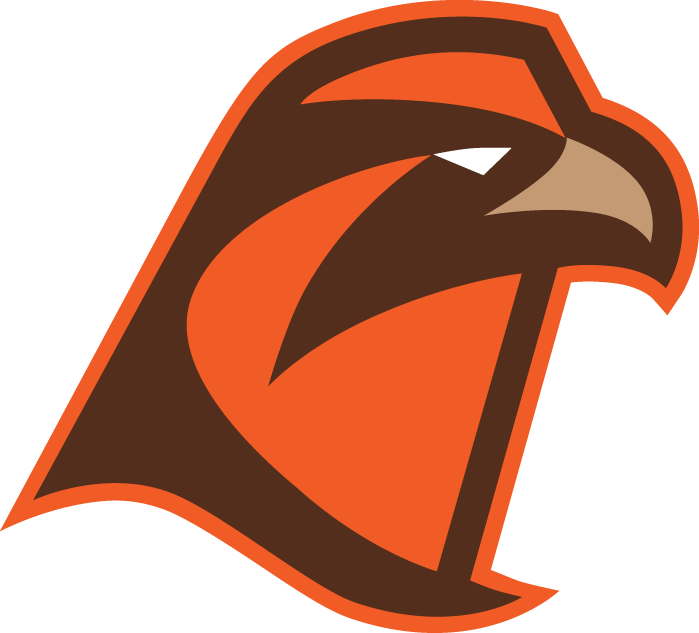 Bowling Green Falcons 2006-Pres Alternate Logo v7 iron on transfers for clothing