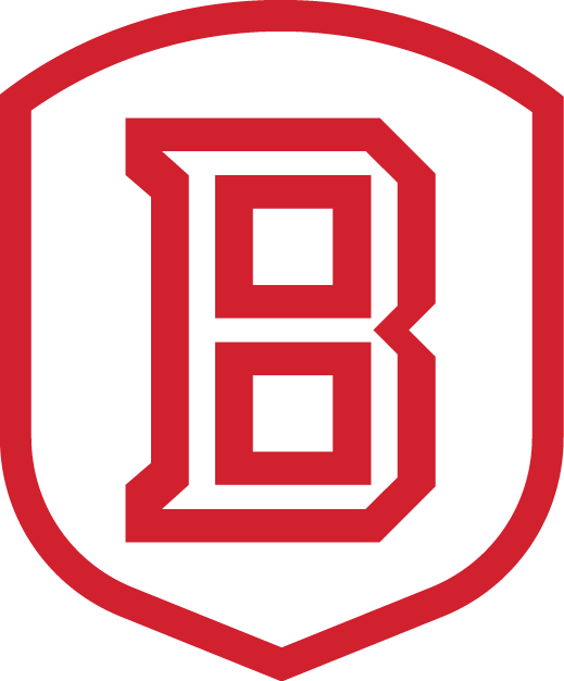 Bradley Braves 2012-Pres Secondary Logo v2 iron on transfers for clothing