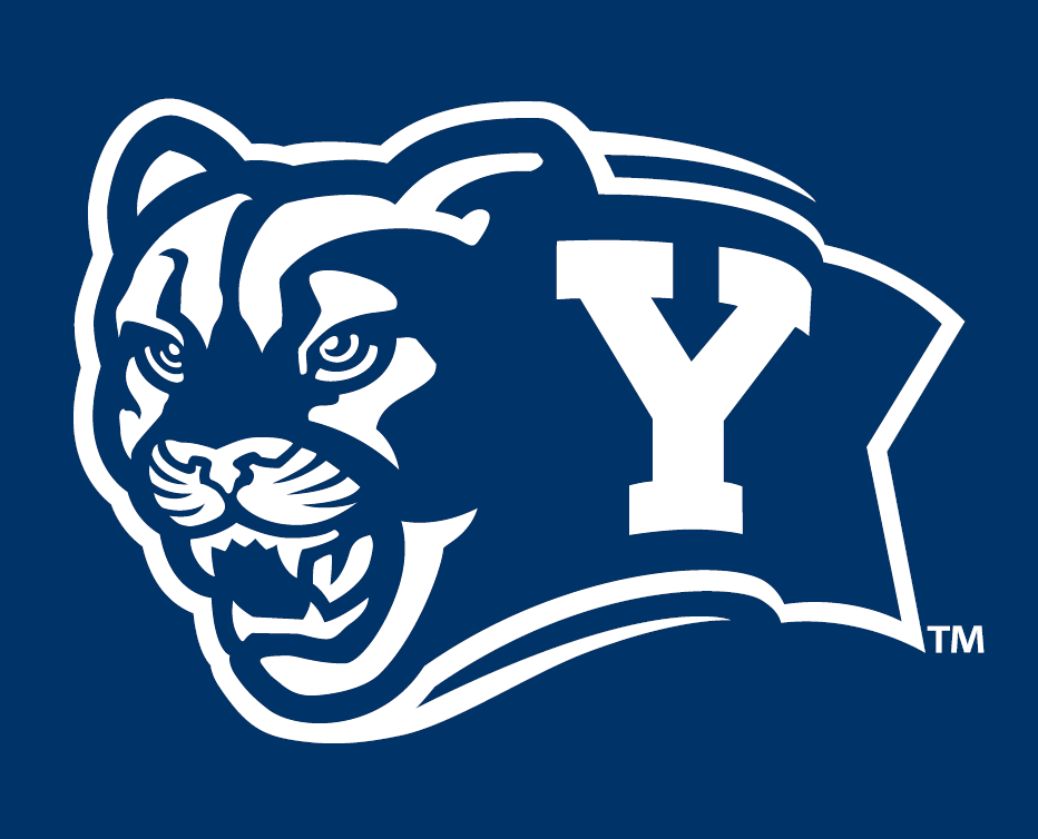Brigham Young Cougars 2005-Pres Alternate Logo v7 iron on transfers for clothing