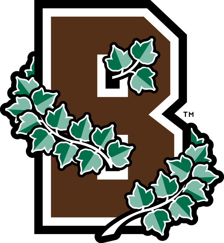Brown Bears 2003-Pres Alternate Logo iron on transfers for clothing