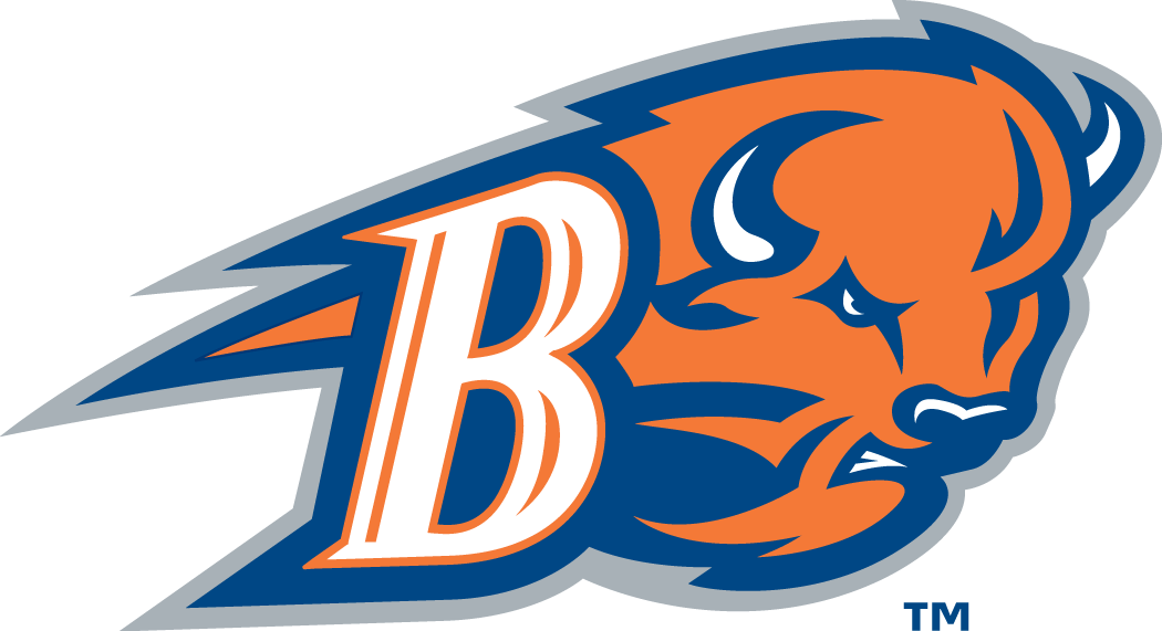 Bucknell Bison 2002-Pres Alternate Logo v2 iron on transfers for clothing