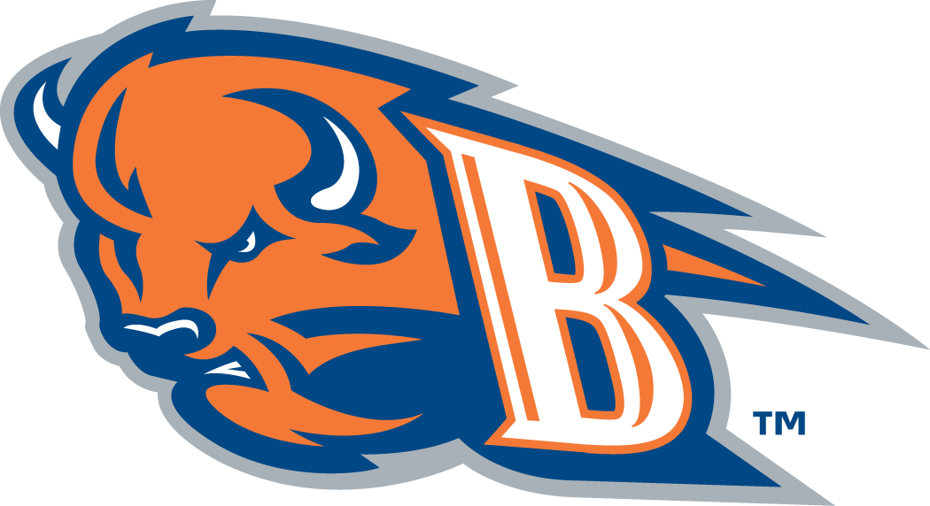 Bucknell Bison 2002-Pres Alternate Logo iron on transfers for clothing