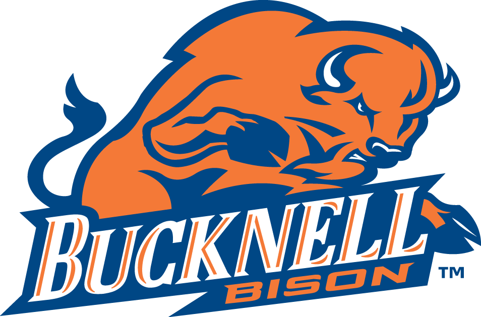 Bucknell Bison iron ons