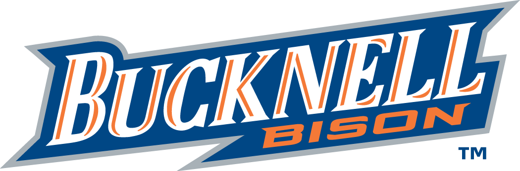 Bucknell Bison 2002-Pres Wordmark Logo v2 iron on transfers for clothing