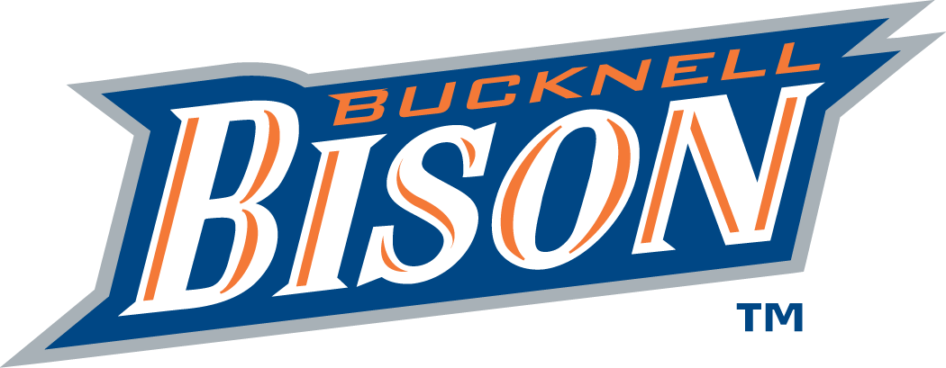 Bucknell Bison 2002-Pres Wordmark Logo iron on transfers for clothing