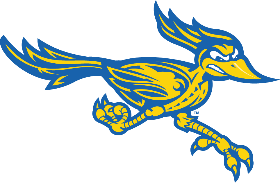 CSU Bakersfield Roadrunners 2006-Pres Alternate Logo v2 iron on transfers for clothing