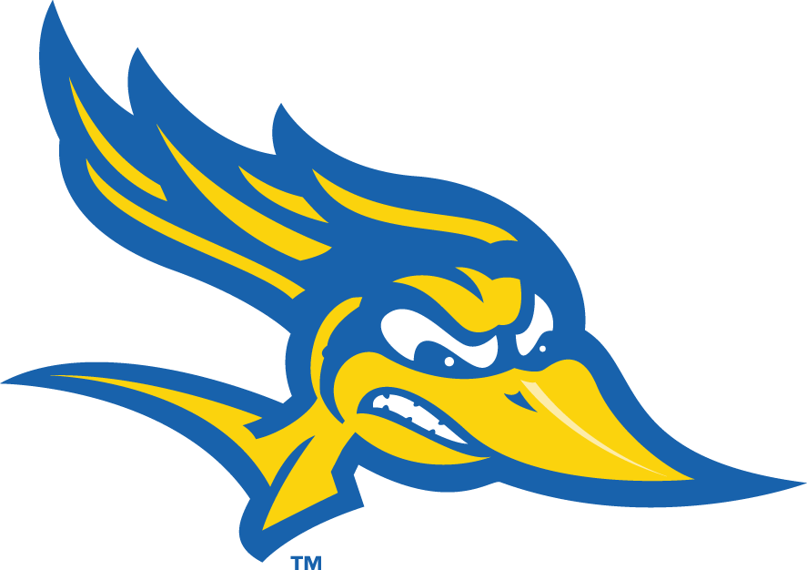 CSU Bakersfield Roadrunners 2006-Pres Alternate Logo v3 iron on transfers for clothing