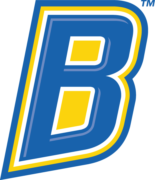 CSU Bakersfield Roadrunners 2006-Pres Alternate Logo v4 iron on transfers for clothing