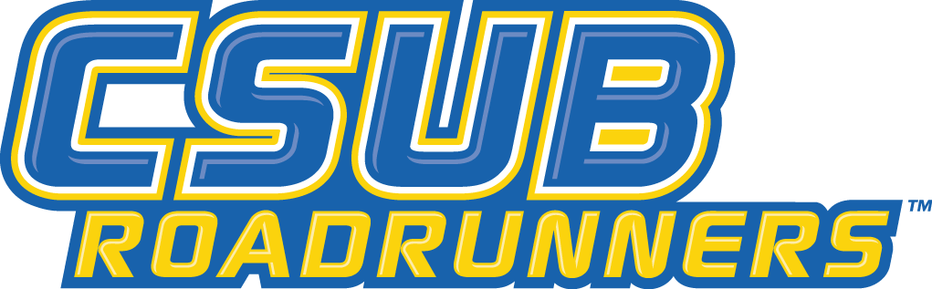 CSU Bakersfield Roadrunners 2006-Pres Wordmark Logo v3 iron on transfers for clothing