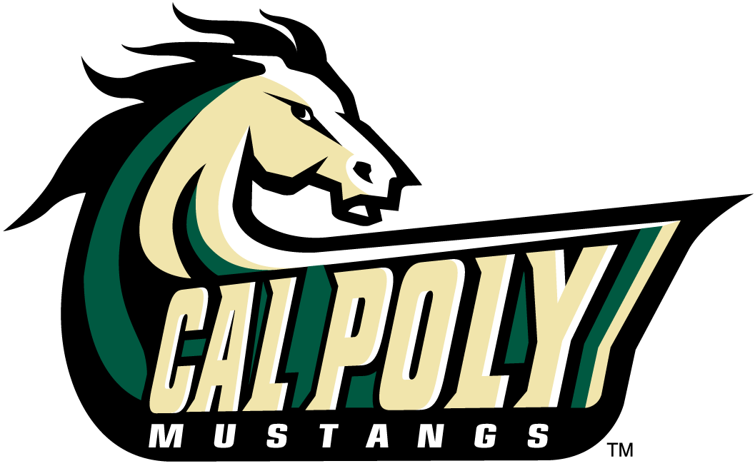Cal Poly Mustangs 1999-Pres Alternate Logo v3 iron on transfers for clothing