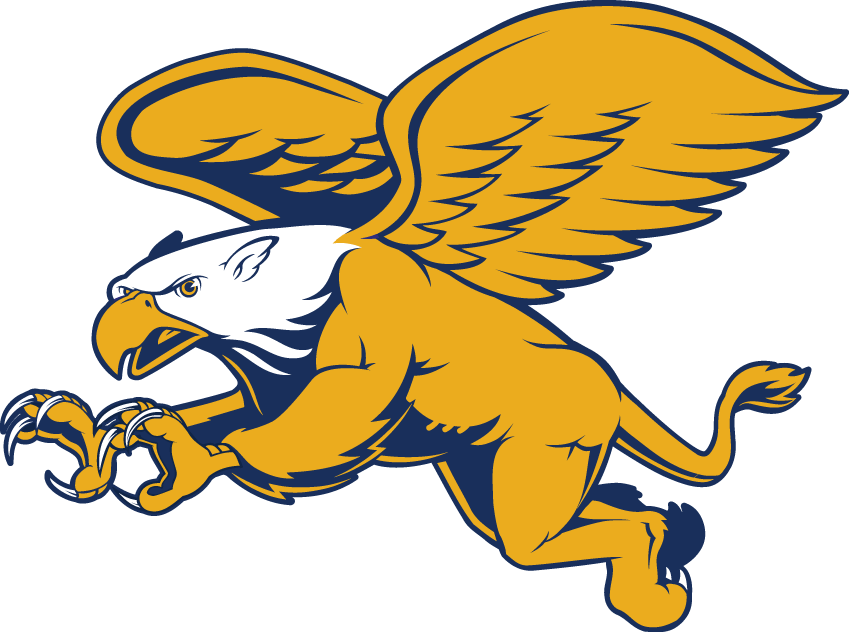 Canisius Golden Griffins iron ons