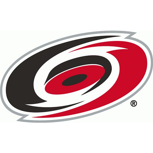 Carolina Hurricanes iron ons