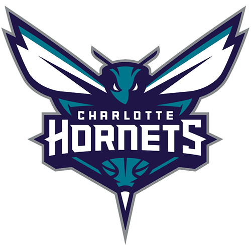 Charlotte Hornets iron ons