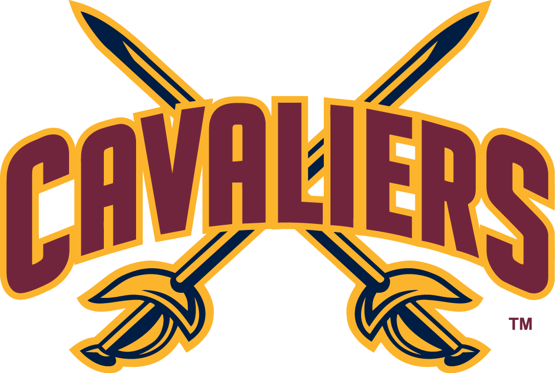 Cleveland Cavaliers 2010-2017 Alternate Logo iron on transfers for clothing