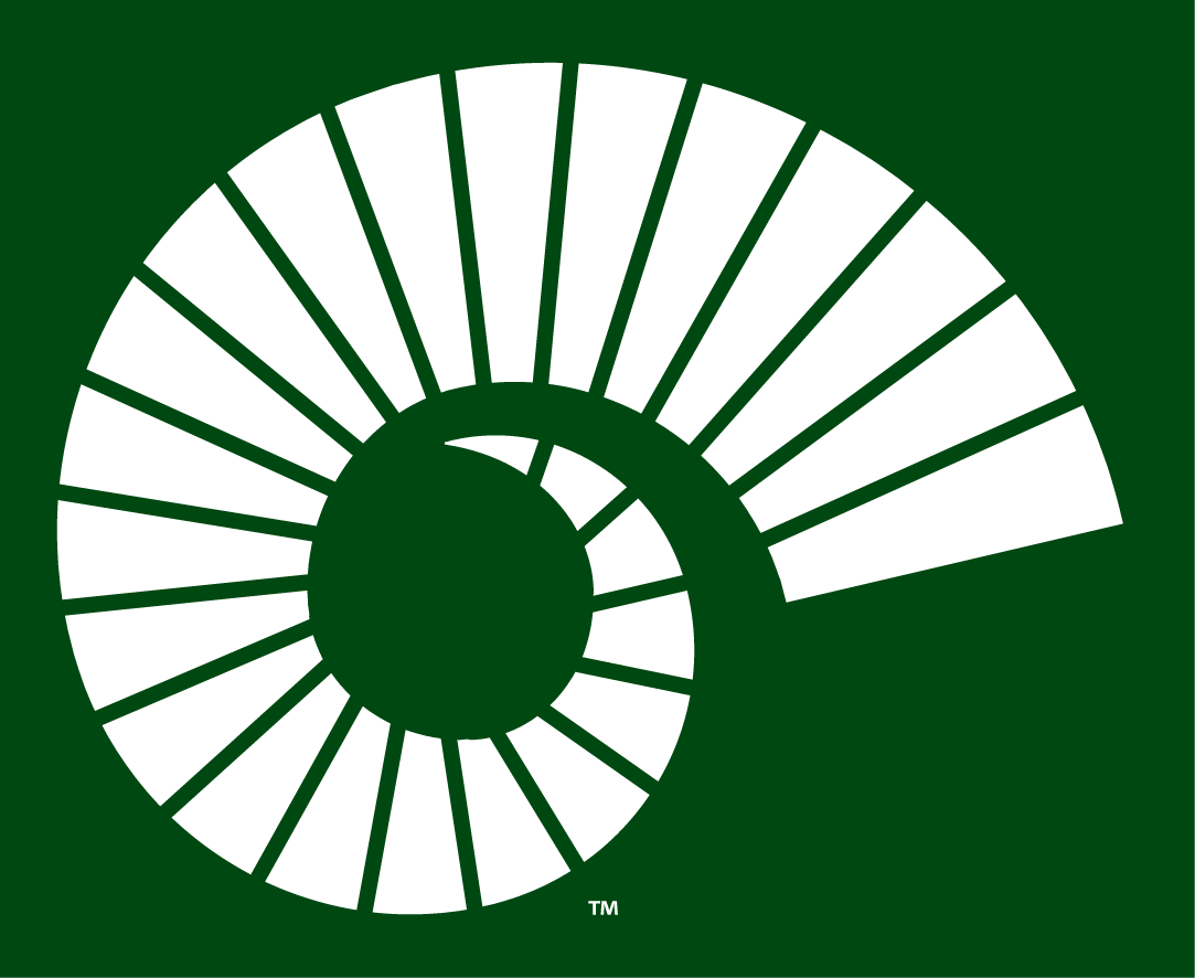 Colorado State Rams 2015-Pres Alternate Logo v3 iron on transfers for clothing