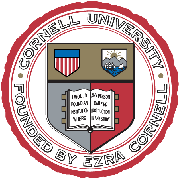 Cornell Big Red 1865-Pres Alternate Logo iron on transfers for clothing