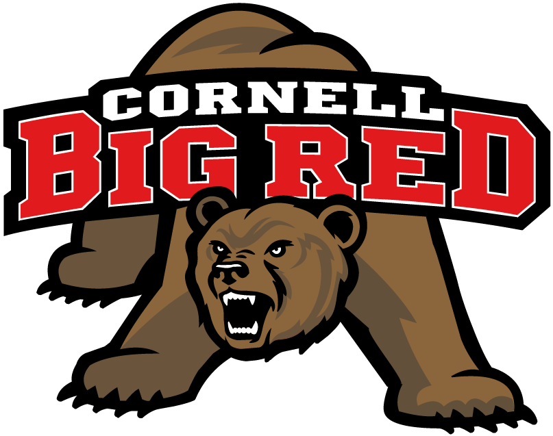 Cornell Big Red 1998-2001 Primary Logo iron on transfers for clothing