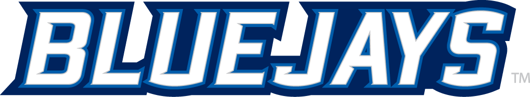 Creighton Bluejays 2013-Pres Wordmark Logo v2 iron on transfers for clothing