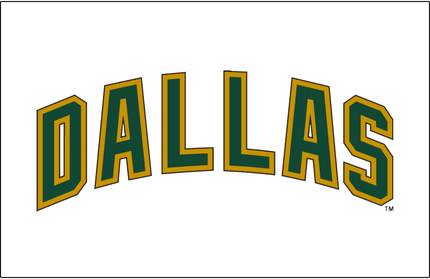 Dallas Stars 2008-2013 Jersey Logo iron on transfers for clothing