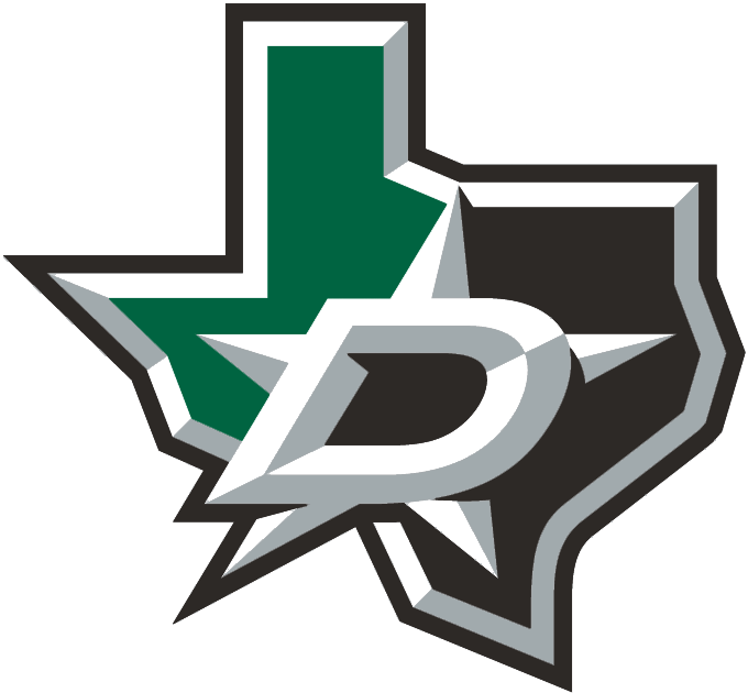 Dallas Stars 2013-Pres Alternate Logo iron on transfers for clothing version 2