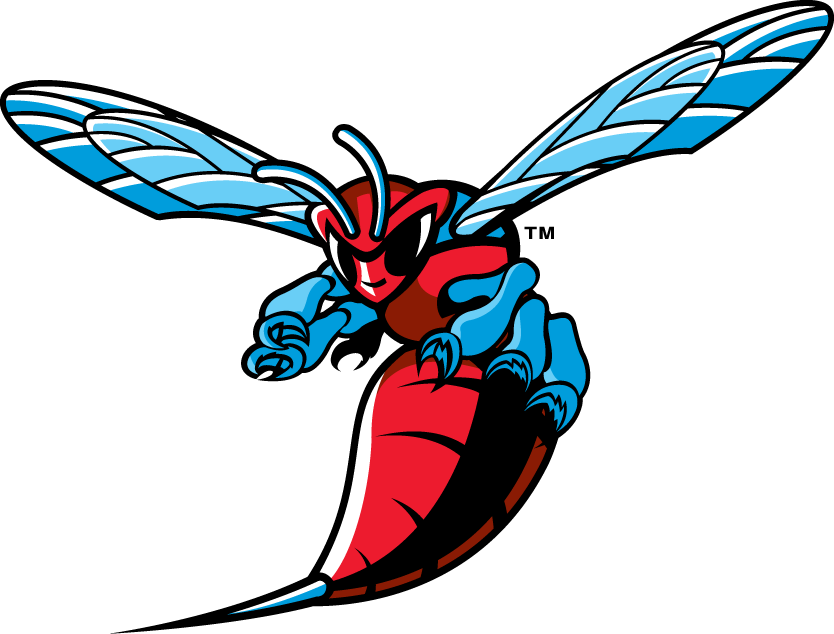 Delaware State Hornets iron ons
