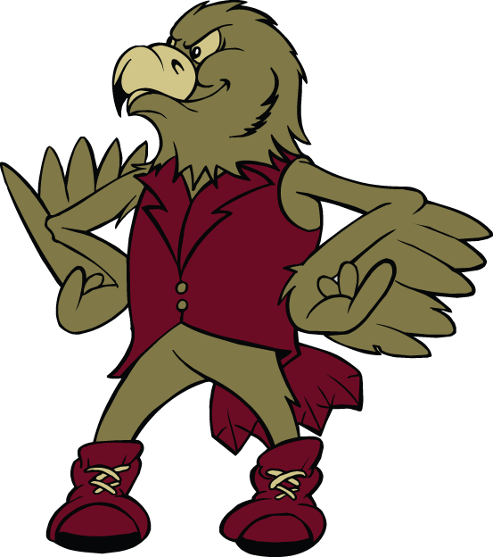 Denver Pioneers 1999-2003 Mascot Logo iron on transfers for clothing