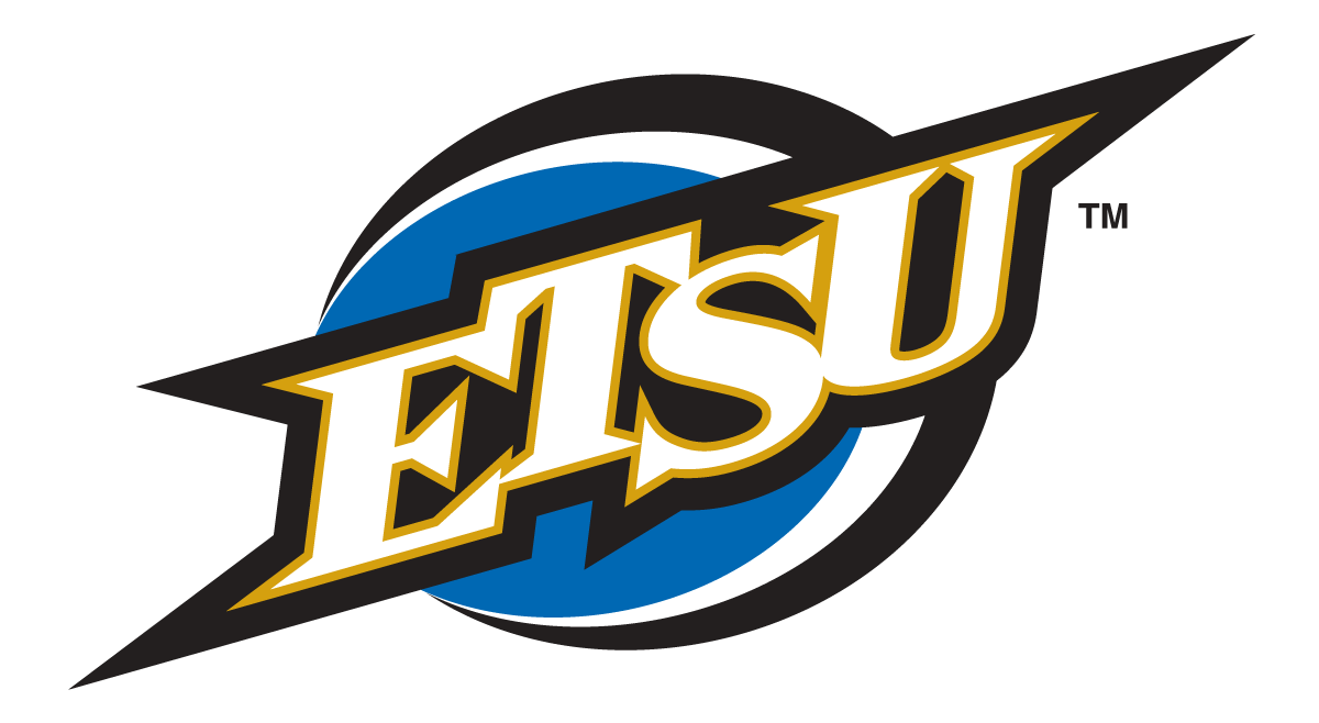 ETSU Buccaneers 2002-2013 Alternate Logo v2 iron on transfers for clothing