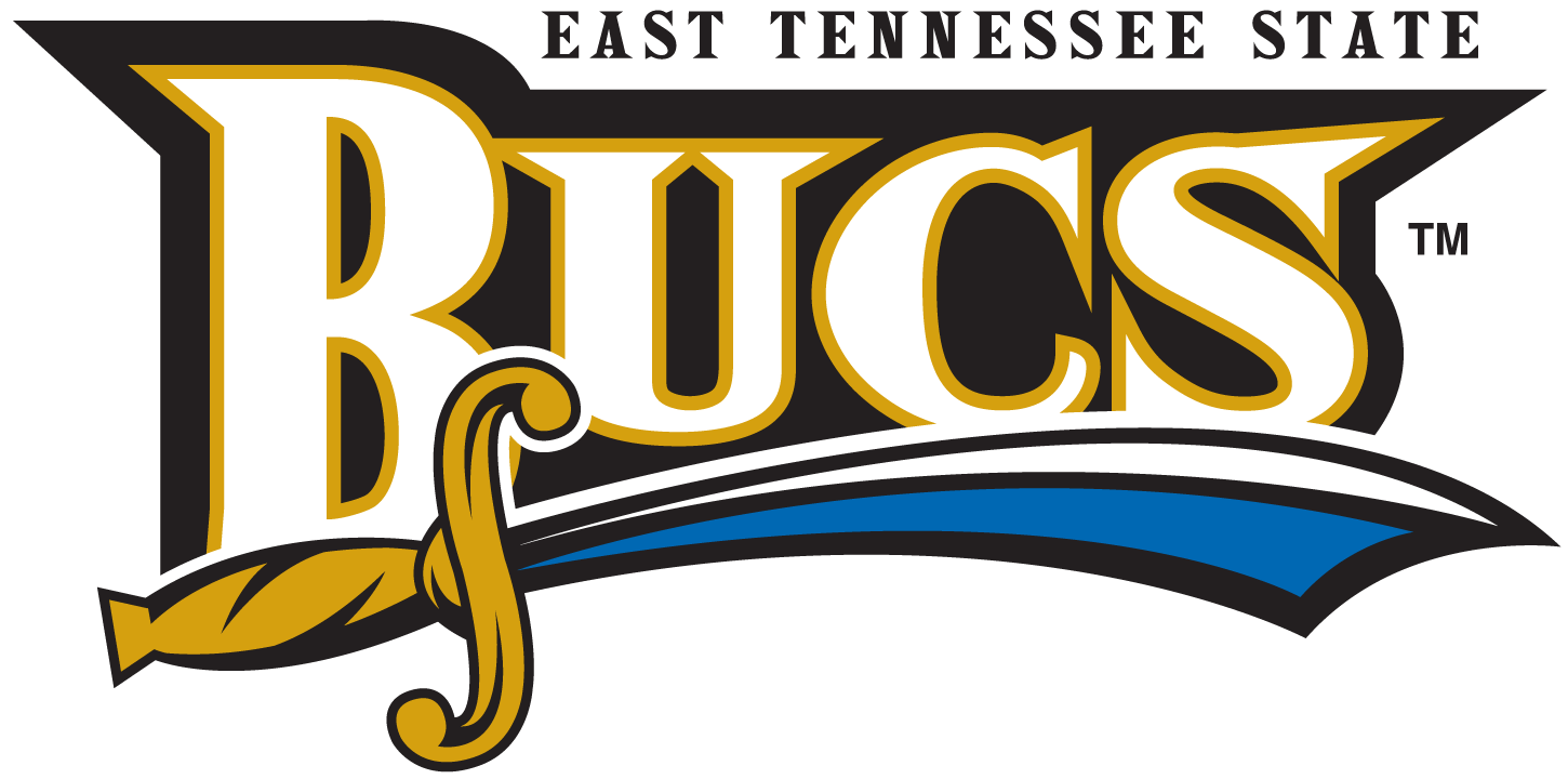 ETSU Buccaneers 2002-2013 Wordmark Logo iron on transfers for clothing