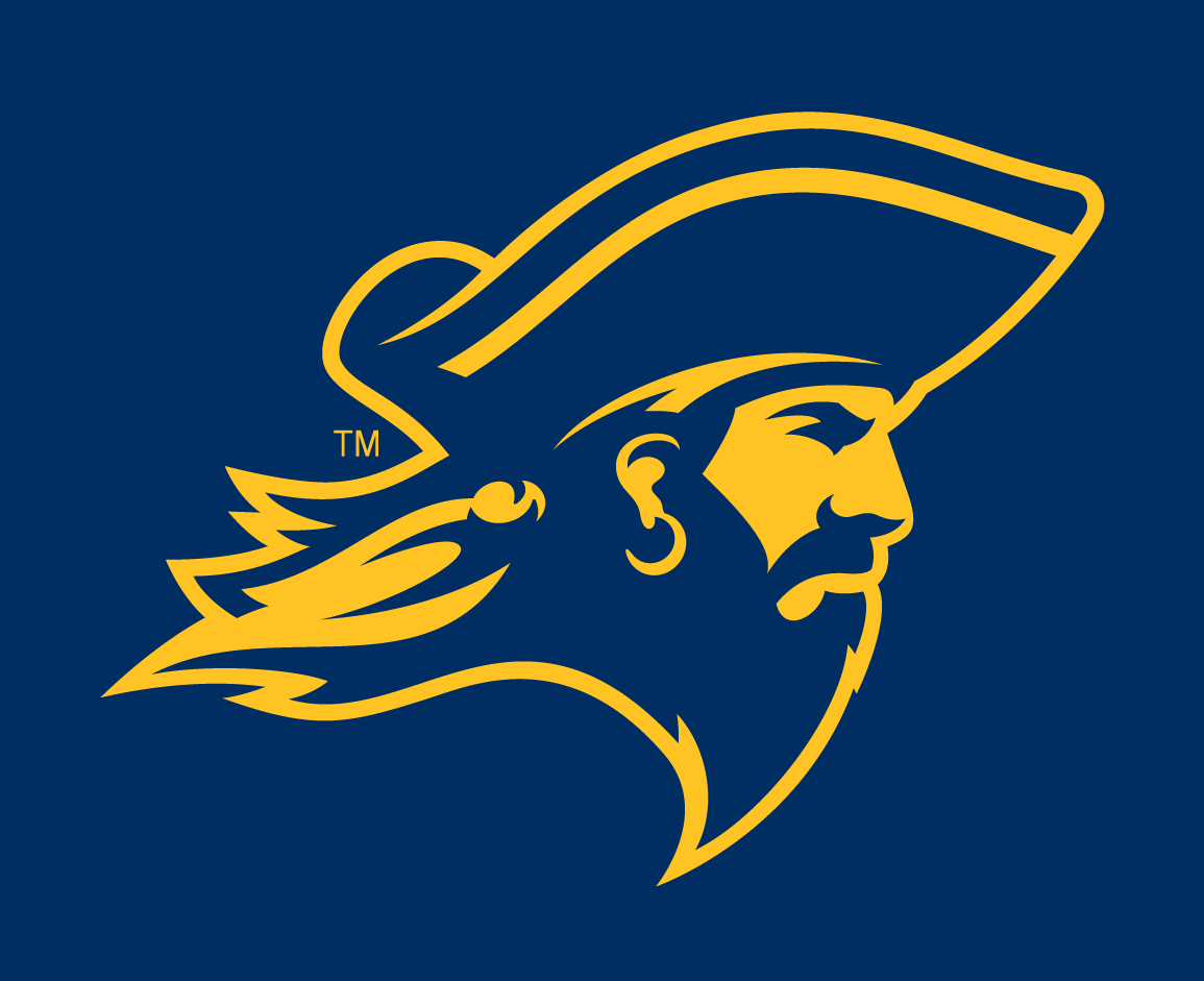 ETSU Buccaneers 2014-Pres Partial Logo v4 iron on transfers for clothing