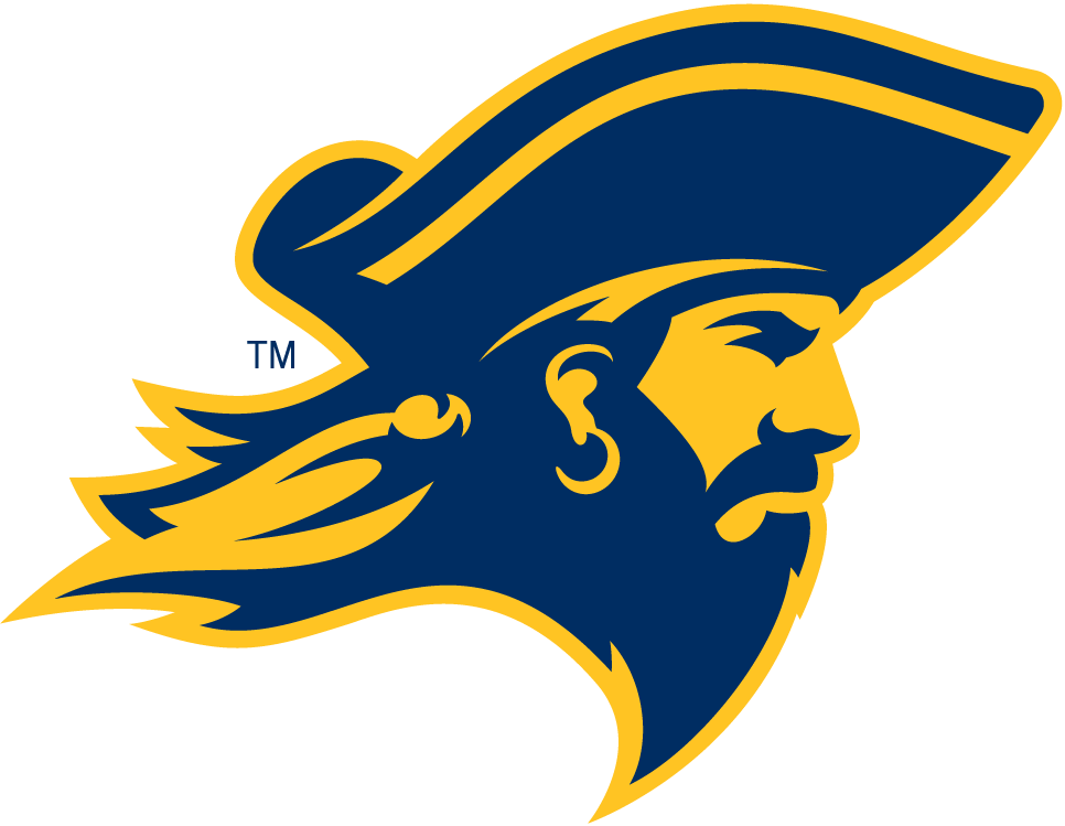 ETSU Buccaneers 2014-Pres Partial Logo iron on transfers for clothing