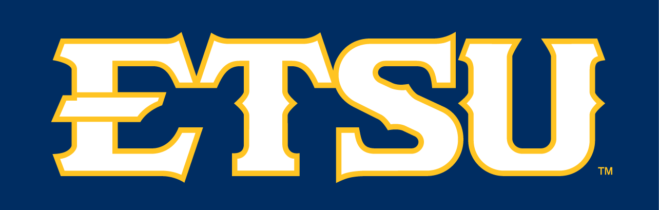 ETSU Buccaneers 2014-Pres Wordmark Logo v3 iron on transfers for clothing