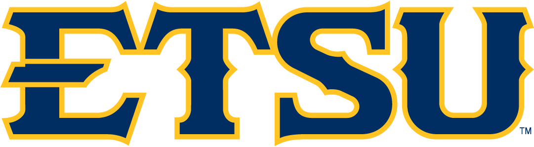 ETSU Buccaneers 2014-Pres Wordmark Logo v4 iron on transfers for clothing