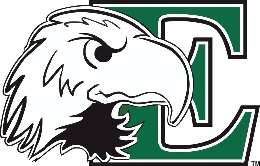 Eastern Michigan Eagles 2003-2012 Primary Logo iron on transfers for clothing