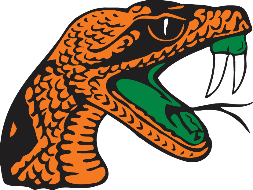 Florida A&M Rattlers 2001-Pres Secondary Logo iron on transfers for clothing