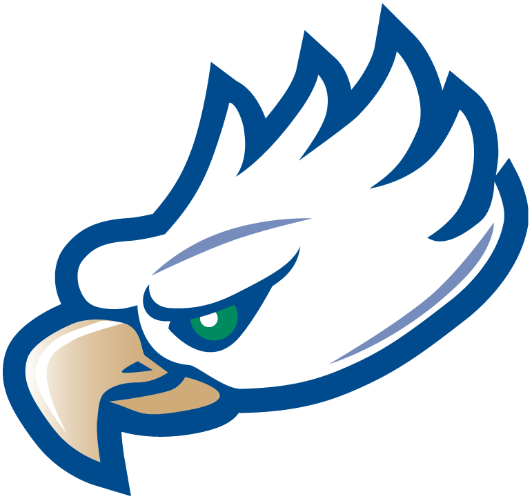 Florida Gulf Coast Eagles 2002-Pres Partial Logo iron on transfers for clothing