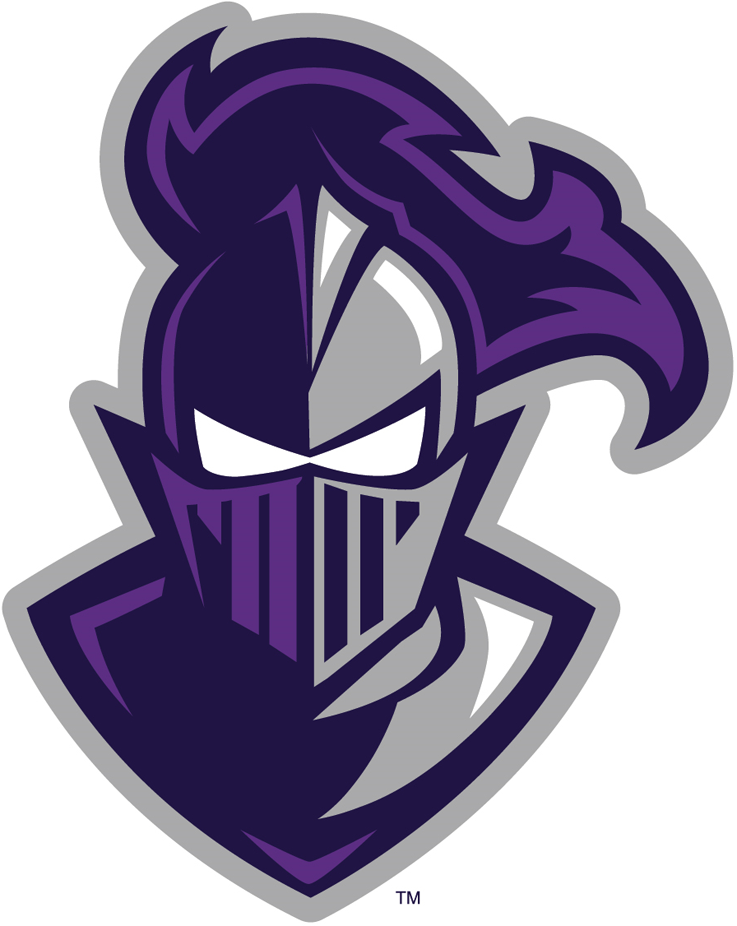 Furman Paladins 2013-Pres Alternate Logo iron on transfers for clothing