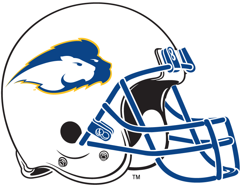 Hofstra Pride 2005-2008 Helmet Logo iron on transfers for clothing