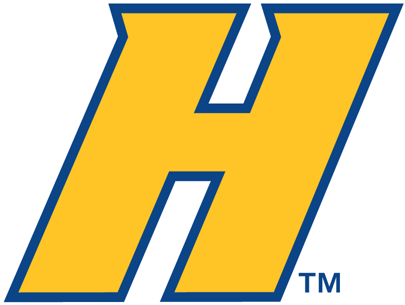 Hofstra Pride 2005-Pres Alternate Logo v2 iron on transfers for clothing
