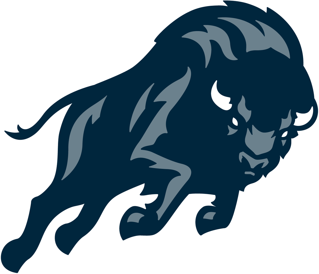 Howard Bison 2015-Pres Partial Logo iron on transfers for clothing